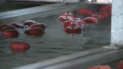 Close up of apple fruit production line in food factory Stock Footage