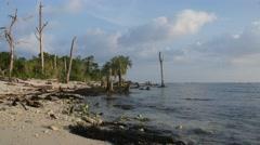 Deserted Island Tide Timelapse - stock footage