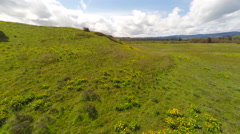 An aerial rising view of grasslands in the Pacific Northwest. Stock Footage