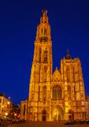 Gothic Cathedral at Night, Antwerp - stock photo