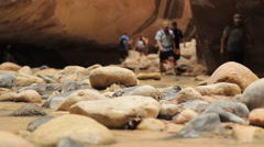 Low angle shot at The Narrows, Zion National Park Stock Footage