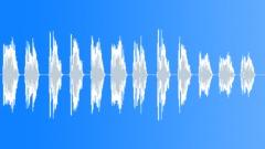 Creepy Birds Crying Strange Noises - 3 - sound effect