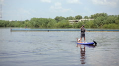 A man with a paddle and a dog floating on a lake on the board on the pond Stock Footage