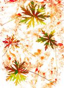 Abstract watercolor background and branch plant. Mixed media - stock illustration