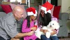 Dad Gives New Puppy To Daughters For Christmas Stock Footage