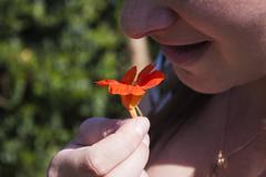 Edible cress flower Stock Photos