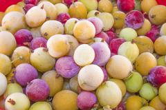 Frozen gooseberries ribes uva-crispa - stock photo