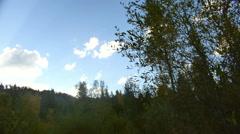 Clouds in colorado forest 3 Stock Footage