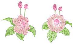 Flower water color set - stock illustration