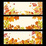 Stock Illustration of Autumn Banners with Berries and Leaves, Vector Illustration