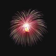 Stock Illustration of Fireworks festive  bursting sparkling