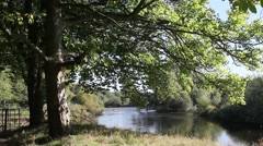 Stock Video Footage of Beautiful Motherwell park with river Clyde in Scotland, autumn time,  footage