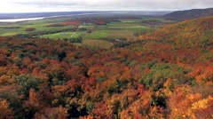 Aerial view of forest Park in fall with beautiful colours. Stock Footage