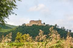 Stock Photo of Castle Hambacher Schloss