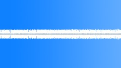 Night Crickets 02 - Loop Sound Effect