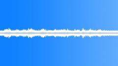 Night Crickets 03 - Loop Sound Effect