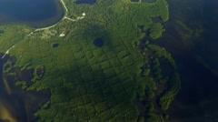 Mangrove Forest Aerial, Tampa Bay, 4K Stock Footage