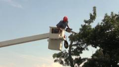 Landscaper man pruning tree, chain saw sound Stock Footage