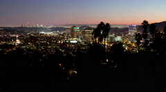 Time Lapse of Los Angeles and Glendale California Night Lights And Palm Trees Stock Footage