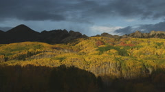 Pan left across bright sunset Autumn mountain yellow forest trees in Colorado Stock Footage