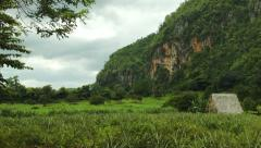 Traditional farmer hut in the fields of Vinales valley Cuba Stock Footage