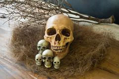 Still life, Awesome pile of skull put on old straw Stock Photos