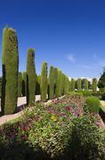 Stock Photo of Gardens and fountains of the Alcazar de los Reyes Católicos, Cordoba, Andalu