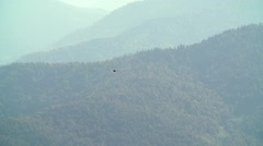 The eagle couple is turned over mountains slow motion Stock Footage