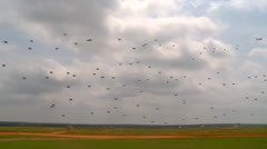 BASE CHARLSTON, MAY 2015, US paratroopers at landing on ground Stock Footage