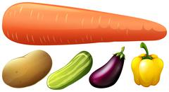 Different kind of fresh vegetables - stock illustration