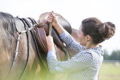 Woman tightening horse saddle for horseback riding Stock Photos