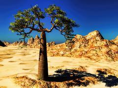 Mighty baobab-Adansonia grandidieri - stock illustration