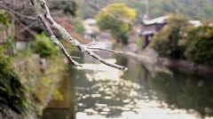 Old River in Kyoto, Japan Stock Footage
