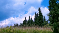 Mountain Landscape Stock Footage