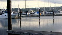 Boats in slips on an evening dock - stock footage