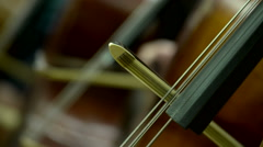 Strings section in an orchestra Stock Footage