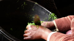 Chopping greens - stock footage