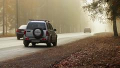 Road through the misty morning forest in the Leningrad region Stock Footage