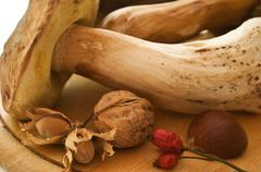 Boletus edulis and dried fruits of forest - stock photo