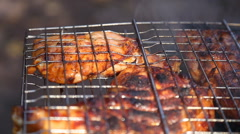 Stock Video Footage of Chiken meat on barbeque grill