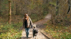 Stock Video Footage of Hipster girl walking in forest with dog on sunny  autumn