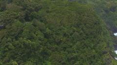 Hawaiian Cliffs Stock Footage