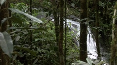 Highland rainforest waterfall Stock Footage