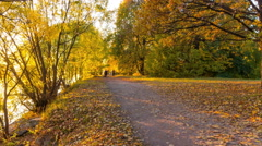 People walking in autumn Park - stock footage
