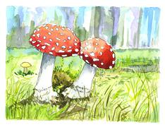 Illustration of autumn mushrooms - stock illustration