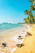 Caribbean beach full of palm trees against azure sea - stock photo
