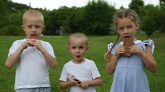 Happy kids eating chocolate bars outdoors in summer park Stock Footage