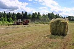 Harvesting hay, fresh round hayrick, farmer tractor working on hayfield. - stock photo