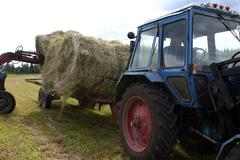 Forklifts loads in Cereal tipping trailer round bale of hay. Stock Photos