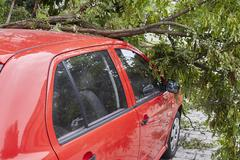 Stock Photo of Car smashed by high winds